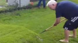 Info Shqip: I fryhet bari në oborr, as që e paramendonte se çfarë ka nën të (VIDEO)