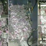 Info Shqip: Miu hyn në bankomat dhe ha afro 20 mijë euro (VIDEO)