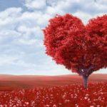 Info Shqip: 5 mënyrat më efikase se si të shpreni dashurinë