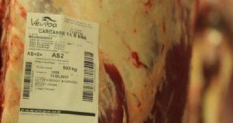 Info Shqip: Gjykata merr vendim për kompaninë belge që eksportoi mish të prishur në Kosovë