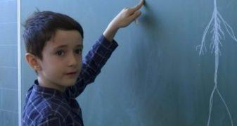 Info Shqip: Njihuni me 8 vjeçarin shqiptar i cili harton teste për mësimdhënësit (VIDEO)