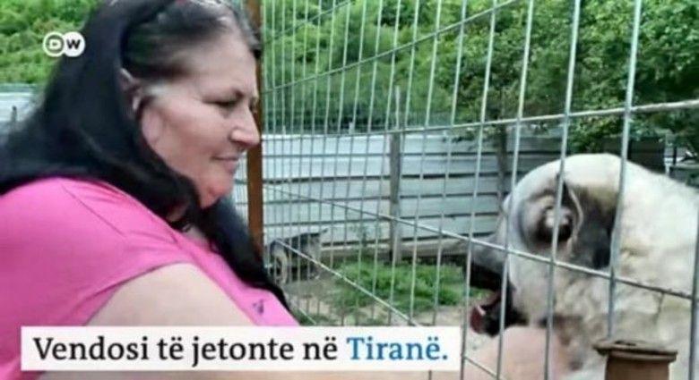 gruaja-qe-la-zvicren-per-te-jetuar-ne-shqiperi