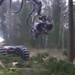 """Info Shqip: """"Përbindëshi"""" i pyjeve: Makineria që e pret dhe e copëton lisin në vetëm pak sekonda"""