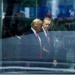 Info Shqip: Reagon Trump pasi Erdogan ra dakord për ndaljen e sulmeve ndaj kurdëve