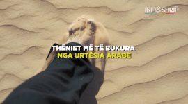 Info Shqip: Thëniet më të bukura nga urtësia Arabe (VIDEO)